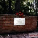 Памятник «Командный пункт 354-й од.». За кинотеатром «Электрон», в лесу, справа от дороги, ведущей в поселок ВНИИПП. Открыт 9 мая 1965 г.